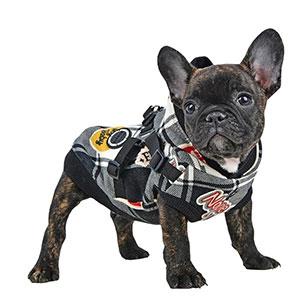 Vernon - Svart Hundtröja med integrerad hundsele