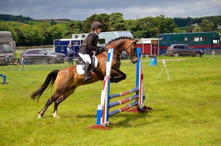 Viktigt med bra säkerhet för både ryttare och häst