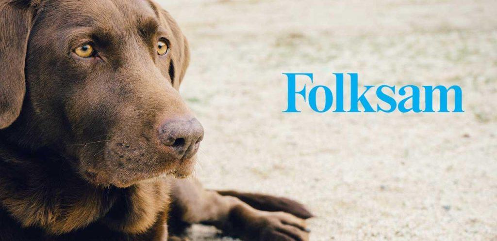 Mellanprodukten: Folksam hundförsäkring; Bas, Mellan och Stor