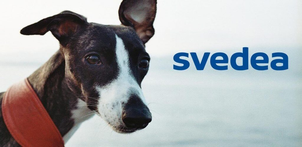 Specialaren: Svedea hundförsäkring