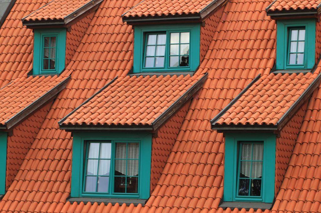 Utför en taktvätt för att undvika djur på taket